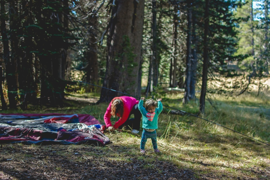 Forever Moments - Family Photography Roseville-10