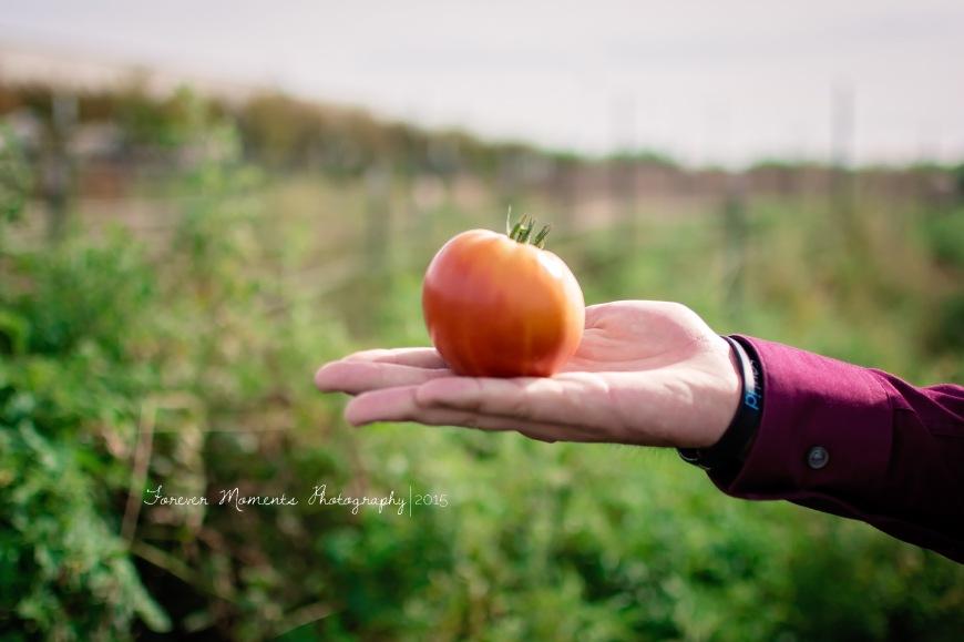 Forever Moments - Senior Photography Roseville-20-6